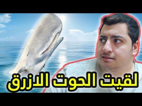 الرجل الانتحاري : لقيت الحوت الازرق