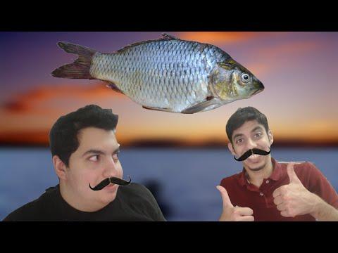 بطولة مين احسن واحد : تحدي حرب السمك