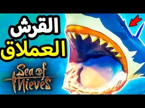 حرب مع اعظم قرش في البحر
